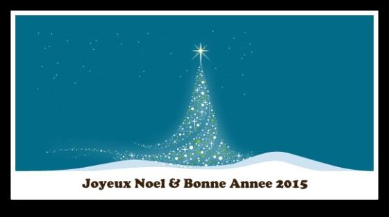 noel2014.png